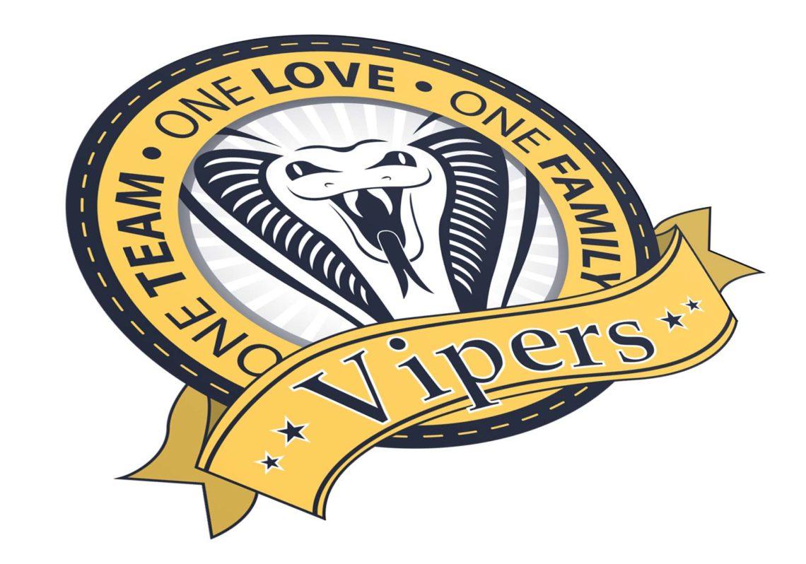 corporate-design-logo-vipers